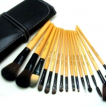 Professional Beauty 15 PCS Makeup Cosmetic Brushes Set with One Pouch