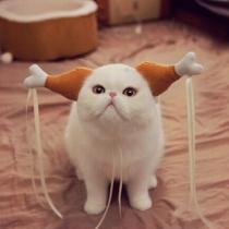 Creative Style Little Dragon Maiden Shaped Pets Head-wear